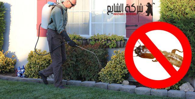 شركة مكافحة النمل بالرياض 0501214920  في المنزل البيت قبل البناء